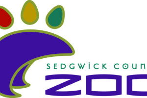 SCZ Color logo