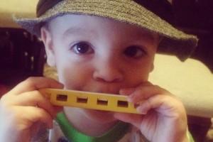 sawyer harmonica