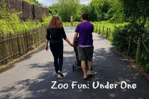 zoo fun under one