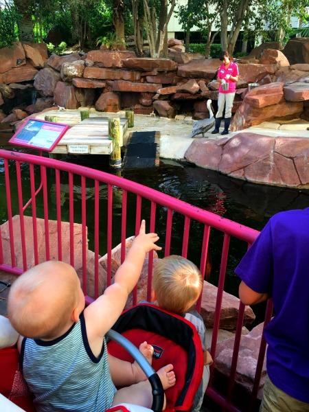 7 Reasons To Take Your Kids To Las Vegas