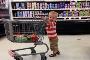 eat what the toddler eats grocery shopping