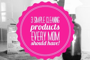 simple cleaning products