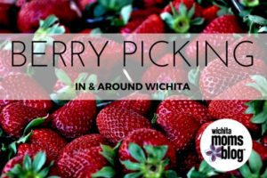 Berry Picking in Wichita