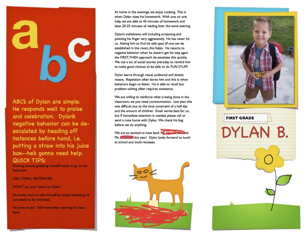 Dylan's Brochure