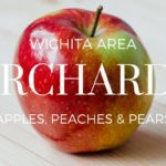 Wichita Orchards (Apple, Peach & Pear Picking)