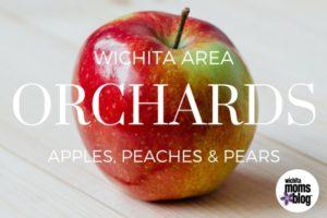 Apple Picking in Wichita