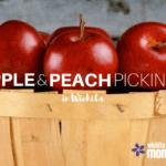 Apple & Peach Picking in Wichita