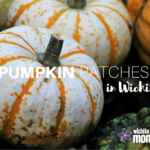 Pumpkin Patches in Wichita
