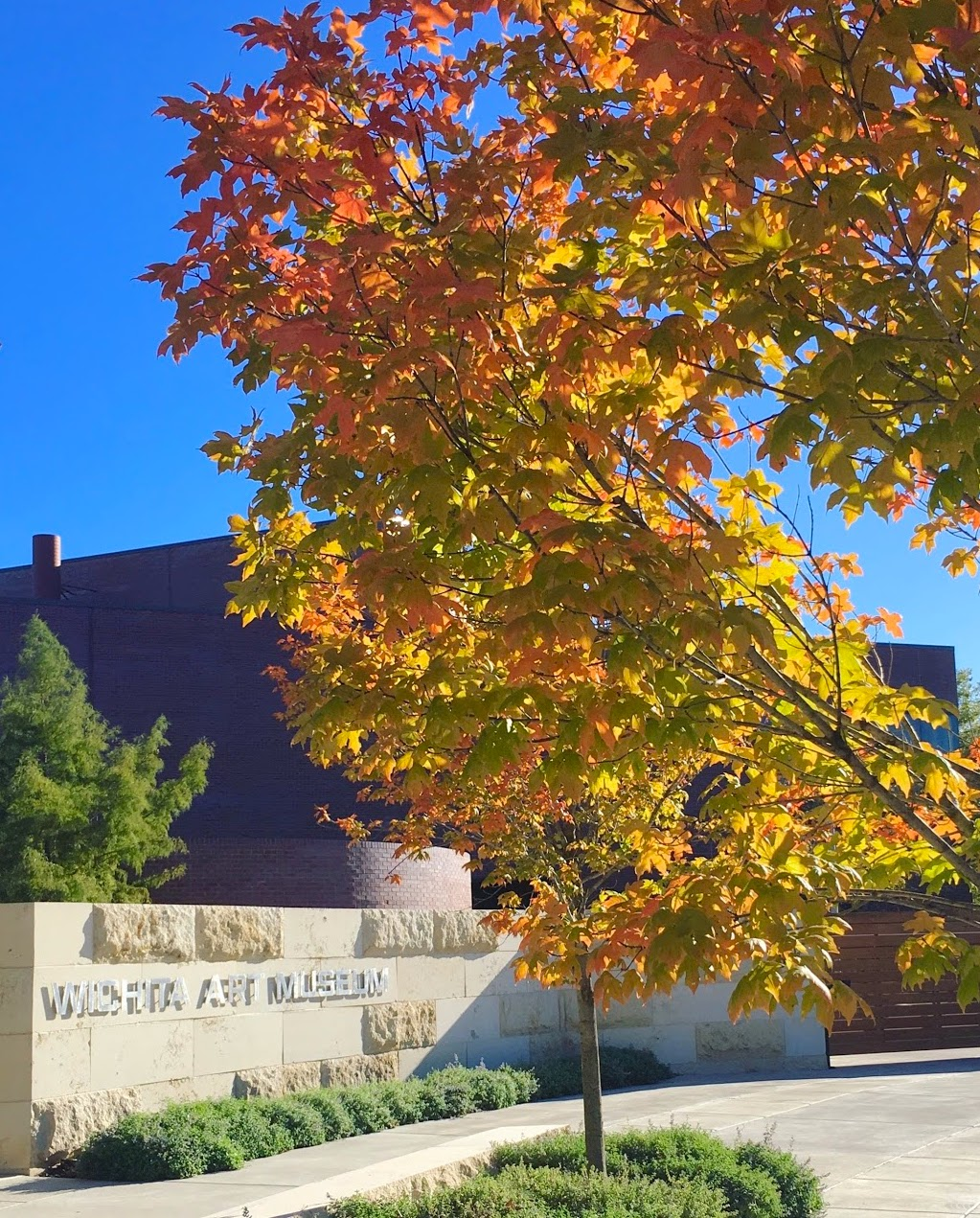Fall Leaves Downtown Wichita