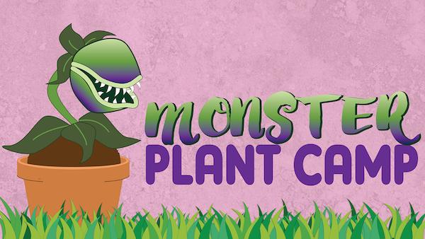 monster-plant-camp2
