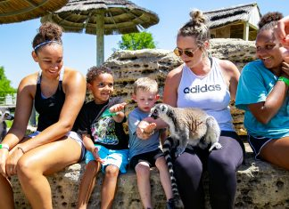 family with lemurs