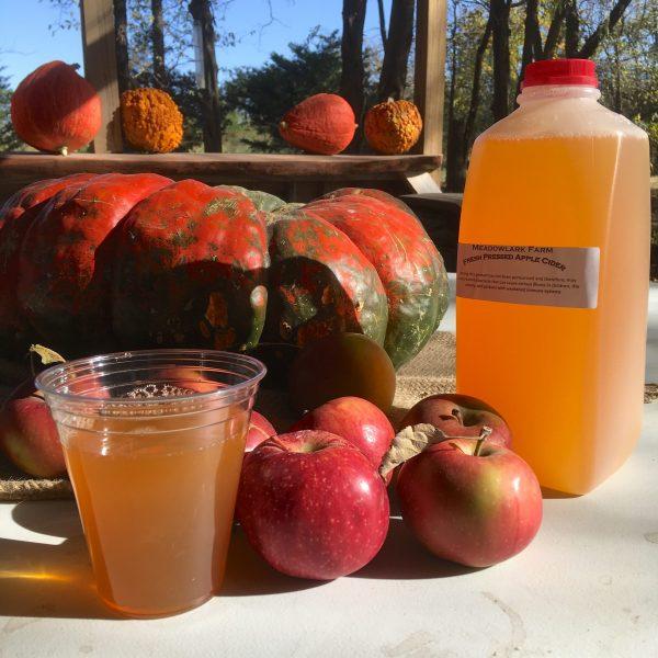 Apple Picking Meadowlark Farm