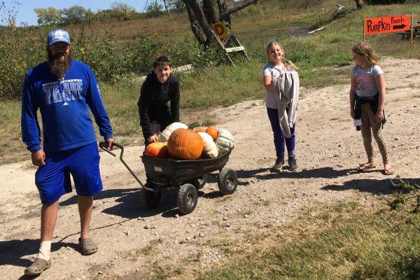 Meadowlark Farm Pumpkin
